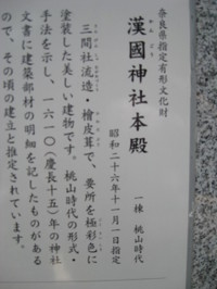 Img_8005