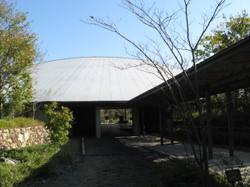 Img_3196