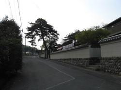 Img_0790