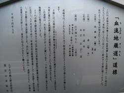 Img_2095