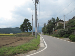 Img_3164