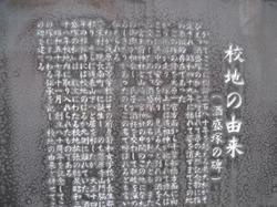 Img_7556